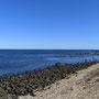 Wir laufen ein bisschen an der Bay entlang