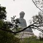 Würdevoll erhebt sich der Buddha