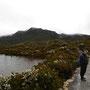 Tasmanischer Sommer