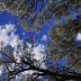 ...gibt es noch jede Menge wunderbare Natur