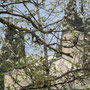 Die Kirche S. Giorgio, vermutlich aus dem 13. Jahrhundert, liegt auf einem Felsvorsprung oberhalb von Mandello del Lario.