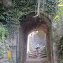 Von Castello wandern wir bergauf nach Ronco, von dem man allerdings im Wald höchstens noch einen Steinhaufen ausmachen kann.