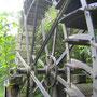 Bei der Säge in Tägerwilen steht das Zuppinger-Rad von 1907, das 1992 durch den Sägeverein restauriert wurde.