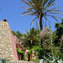 Ibiza - Cala Salada