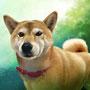 「柴犬」オリジナル