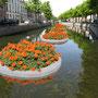 Impressie van een drijvende tuin in de gracht van Kampen