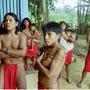 Brazilian indigenous of the Waiapi