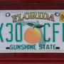 das Kennzeichen von Florida