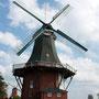 die grüne Mühle