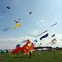 Drachenfest in Norddeich