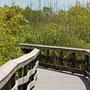 der Anhinga Trail
