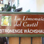 La Limonaia del Castel