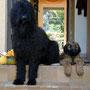 Mit Alischa auf Beobachtungsposten an der Haustür.