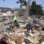 春頃の墓地(5月4日撮影)