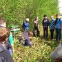 Am nächsten Tag bei der Exkursion wurde erst eine Kurzumtriebsplantage in Wainsdorf...
