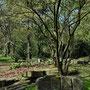 Frühling im Westfalenpark Dortmund