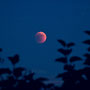 <b>Lunar Eclipse (15. June 2011 - 22:00)</b><br><b>Equipment:</b> Nikon D90 + Nikkor 55-200mm f/4.5