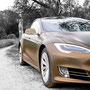 Tesla im Spreewald - Fahrgefühl 2.0