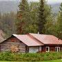 Bärenfell an der Hüttenwand in Wiseman