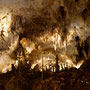 Carlsberg Cavern
