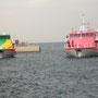 元町港の桟橋に、(画像撮影R氏)