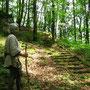 keltentreppe bei Burggeillenreuth/FrankenL
