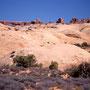 Petrified Dunes mit North & South Window im Hintergrund. Arches Nationalpark/Utah.