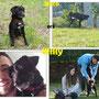 8 marzo 2015- Nero, ora WILLY, è stato adottato!!!... grazie a Stefano e famiglia...sii felice e fai il bravo!!!
