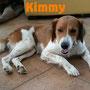 17 settembre 2016 - missione compiuta con Kimmy: siamo riusciti ad evitarle il canile, a trovarle una nuova famiglia dove trascorrerà il resto della sua vita, circondata da tanto amore!!!