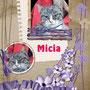 gennaio 2014- Amelie (Micia)...ha trovato casetta!!!...