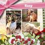 novembre 2013- anche la piccola Rosy, abbandonata, adottata, rifiutata...ha trovato finalmente chi l'amerà per sempre! La sua casa sarà a Torino! Sii felice piccola...