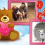 22 nov 2014 - JACK, tenero cucciolotto è stato adottato: eccolo a casetta con il suo papà, Generoso...sii felice!!!