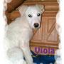 novembre 2013 - Viola (ex Kira) è stata adottata: il suo desiderio è stato esaudito! felice vita piccola...