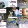 gennaio 2014 - Cindy è stata adottata da Pasquale e famiglia e vive a Ladispoli (Rm): da ora solo coccole e felicità x te pelosetta...sii felice!!!