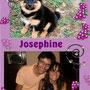 settembre 2013 - Josephine, pallotta di pelo, è stata adottata: qui è a casetta, con mamma Simona e papà Paolo, circondata da tanto amore...