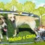 luglio 2013 - Chris e Melody sono stati adottati in Trentino da due famiglie amiche e vine di casa: continueranno a giocare insieme...