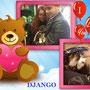2013 - Django è stato adottato! Qui è con mamma e papà e a casetta che si gode il meritato riposo!!!