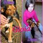 febbraio 2014 - Ecco la dolce Gioia con la sua padroncina Camilla .... Anche lei ha trovato la sua serenità finalmente !