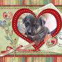6 settembre 2014 - Kalì: anche questa cucciola, di mamma simil husky, è stata adottata ed è andata a vivere col suo papà a Roma...tante coccole e amore per te, piccolina!!!