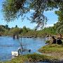 Erholung am Rheinufer