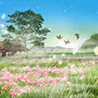 今朝の秋  立秋の頃の よく晴れた朝の気を 今朝の秋と言います。 夏から秋への変わり目は 虫や野の花で 感じることが出来ますが 何より朝の空気が 違うようです。