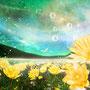 光の春  寒い冬の終わり。 屋根の雪が水滴となって 落ちる最初の一滴を ロシアでは光りの春と 言うそうです。 暖かな日差しがそそぎ 野の植物達も目を覚ましました。