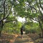Im Carlappa Memorial Park.