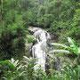 Der Robinson Wasserfall. Ungezähmte Natur.
