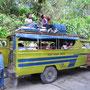 Schul-Jeepneys.