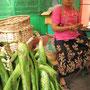 Aloe-Vera-Verkäuferin.
