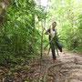So sehen viele der Dschungelpfade aus. Keine Chance ohne Karte die Orientierung zu bahalten.