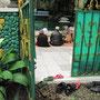 Muslime beten an einem bedeutenden Grabmal. Soviel habe ich mir gemerkt.