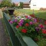 Blumenschmuck am Rinnbach
