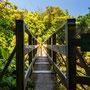 Levada-Trail
